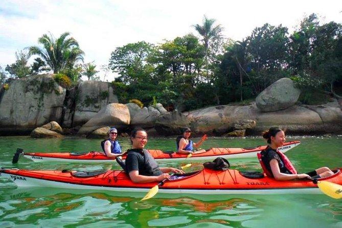 Mangrove and Beach Kayak Tour