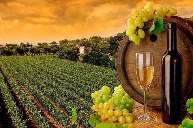 COMBO 1. visit three vineyards during the day CONCHA Y TORO,SANTA RITA,UNDURRAGA