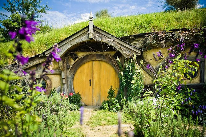 Auckland to Rotorua via Hobbiton Movie Set Tour - One Way