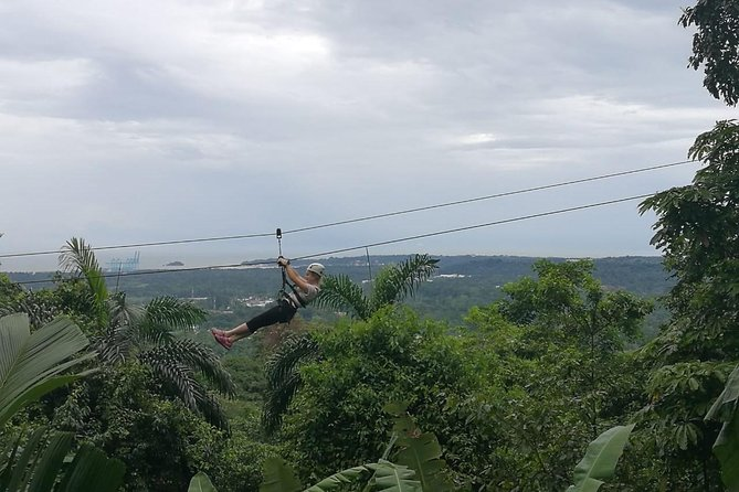 Zipline Canopy Tour & Tortuguero Canal Shore Excursion from Puerto Limon Costa Rica by Greenway Nature Tours
