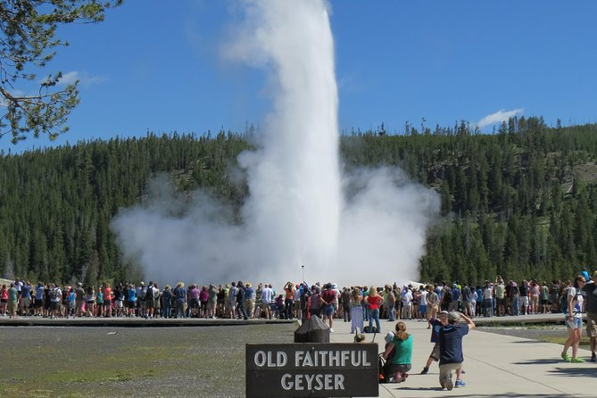 Yellowstone National Park - PRIVATE Full-Day Lower Loop Tour from Jackson Hole