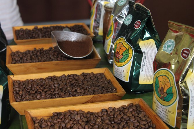 Discover everything about the process and preparation of the Coffee in a guided coffee tour.