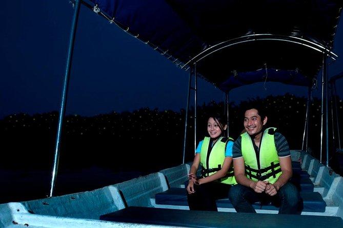 Private Evening Fireflies Tour Kuala Selangor