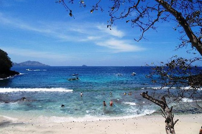 Bali Private Tour and Transport Service