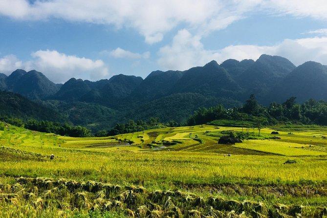 Utforska Pu Luong - Ninh Binh 4 dagar / 3 nätter