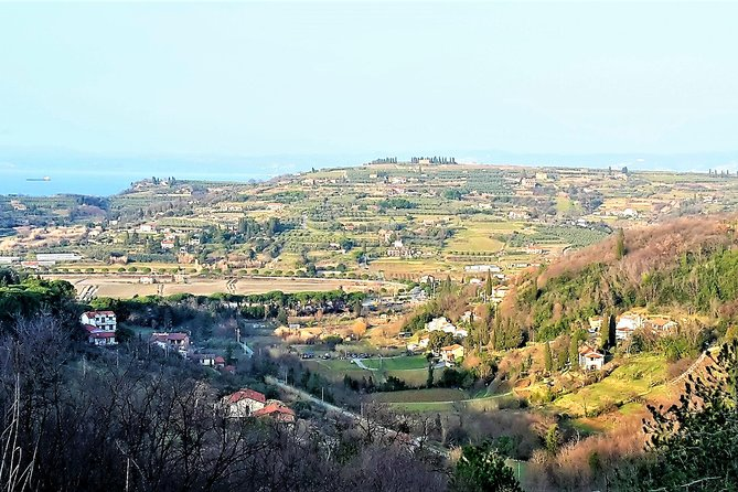 Footpath Above Lucija To Lucan