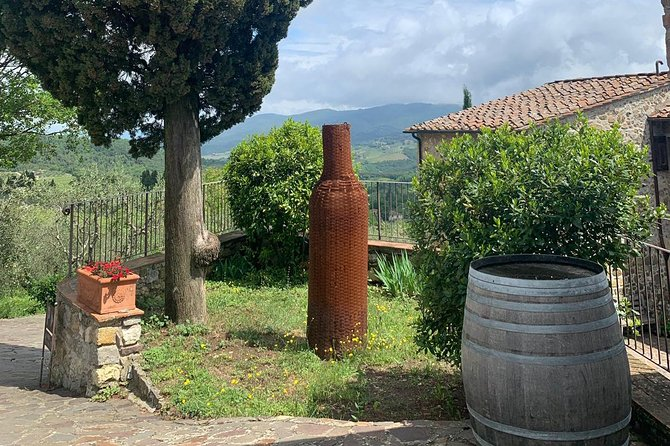 Chianti Vineyards Tours in Private Luxury Van from Florence photo 9