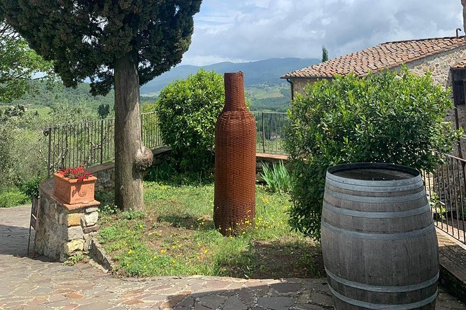 Half Day Chianti Wine Tour with Private Luxury Van