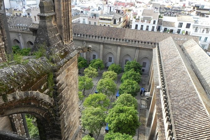Giralda and Seville Cathedral. Guided tour for small groups photo 7