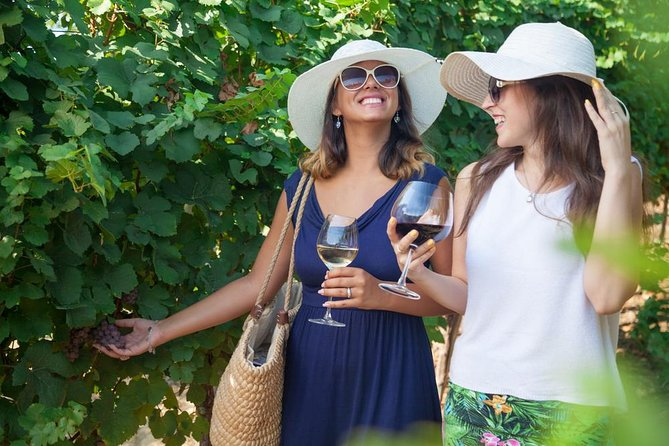 Authentic Biological Winery Experience in Teramo Countryside