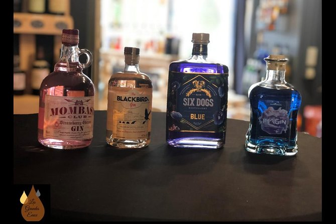 Gin tasting - Discovery of premium Belgian gins