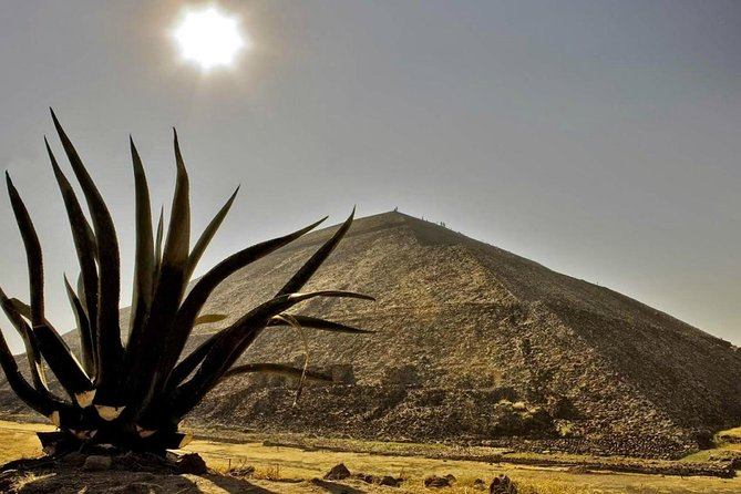 Tour to the Pyramids of Teotihuacán and Basilica of Guadalupe