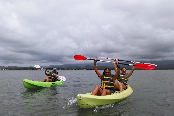 Monkey Island Kayak EcoTour