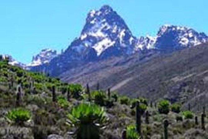 Mount kenya trekking ,Masai mara ,samburu national park,amboseli national park,