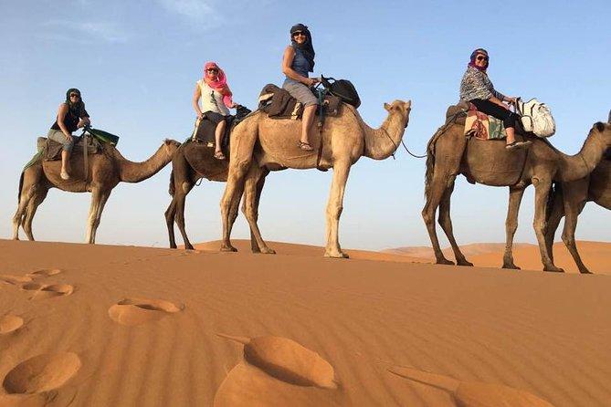 4 Day Sahara Desert Trip From Marrakech: Marrakesh - Sahara Desert - Marrakesh