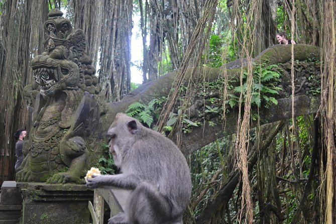 Private Tours The Best Highlight of Ubud photo 4