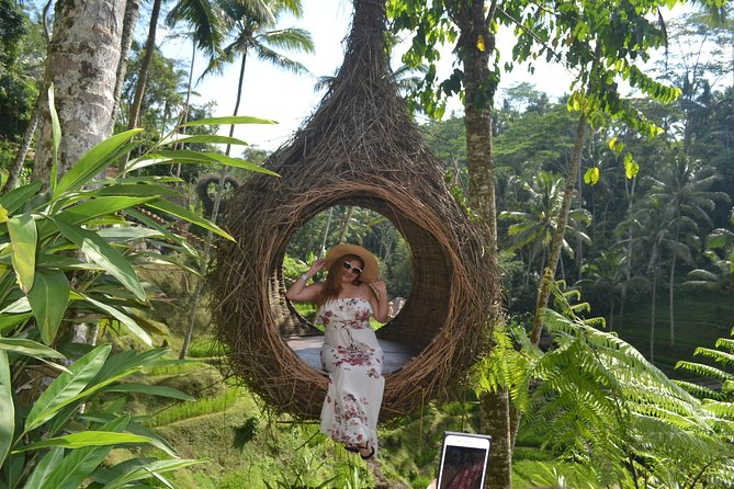 Ubud Spot Monkey Forest, Swing, Rice Terrace and Waterfall