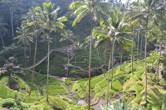Package 2 Days Tours Explore Bali Island