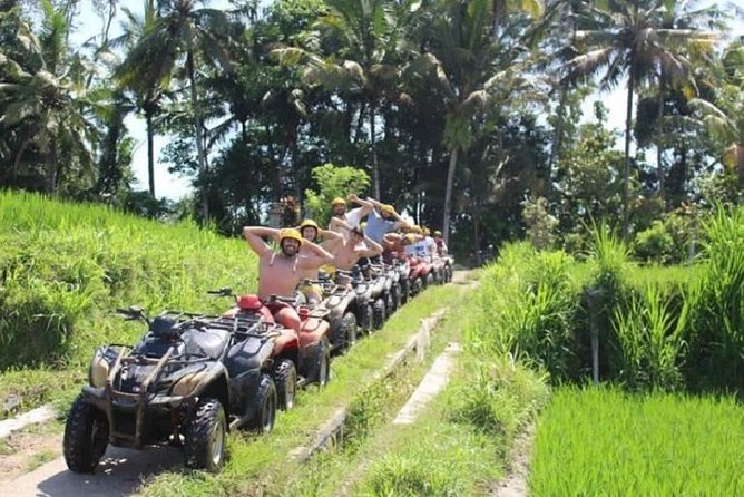 Bali Quad Bike Adventure and Ubud Monkey Forest with All-inclusive