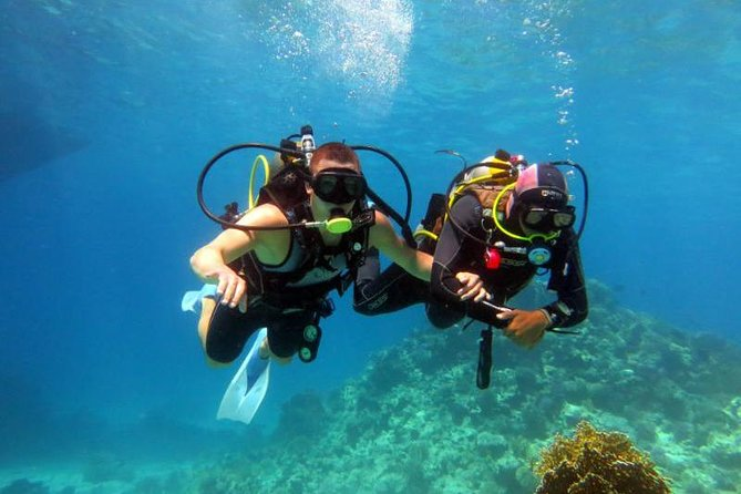 15 Minute Introduction Dive From The Beach