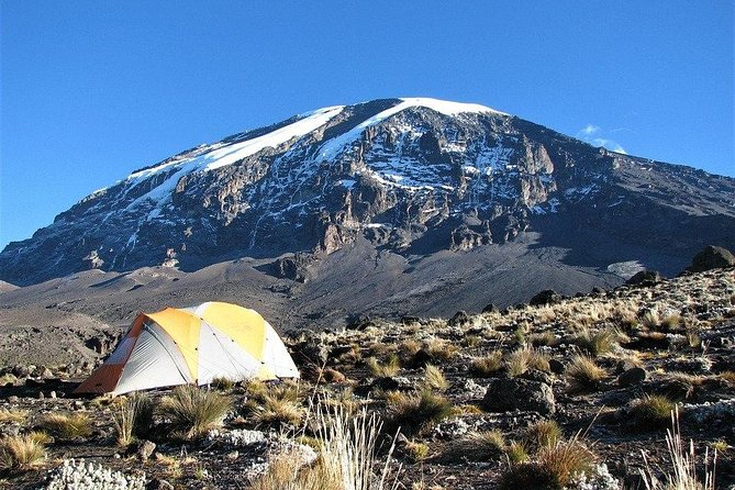 8 Day Kilimanjaro Trekking Tour + 2 nights hotel stay via Lemosho Route