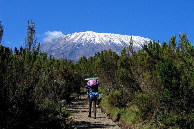 6 Day Kilimanjaro Trekking Tour + 2 nights hotel stay Via Marangu Route