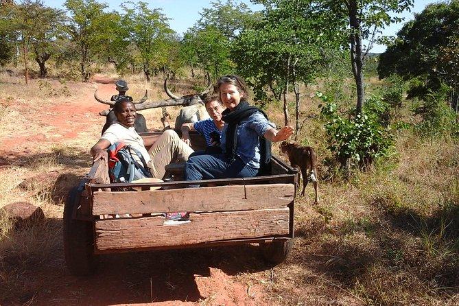 Cultural Tour (Mukwalantila Village)