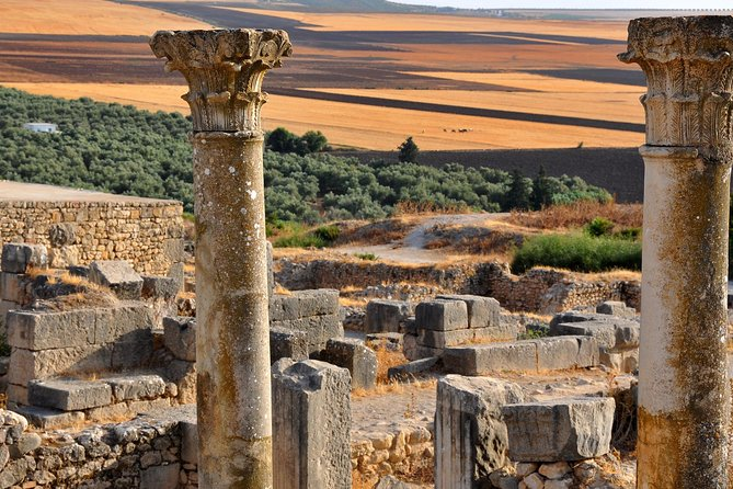 Day Trip From Fez To Meknes Volubilis