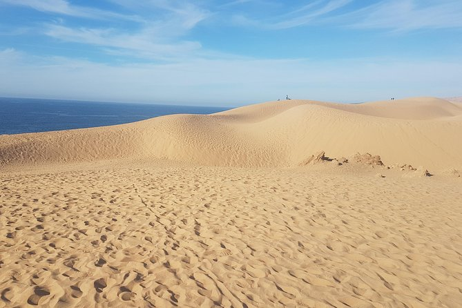 Agadir Day Trip to paradise valley & Sahara Sand Dunes With Lunch.