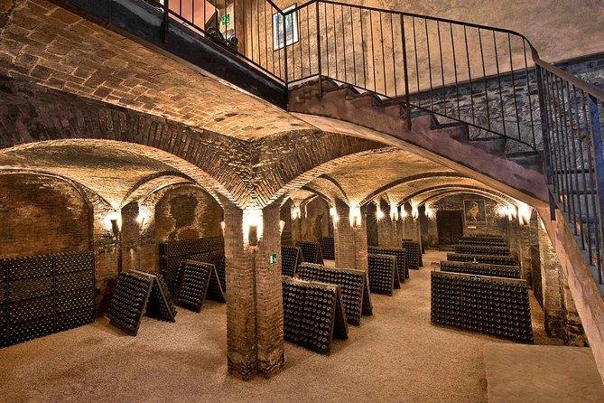 Wine day tour from Alba, Piedmont