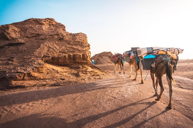 The caravan of the desert, 7 days of travel including 6 days on foot