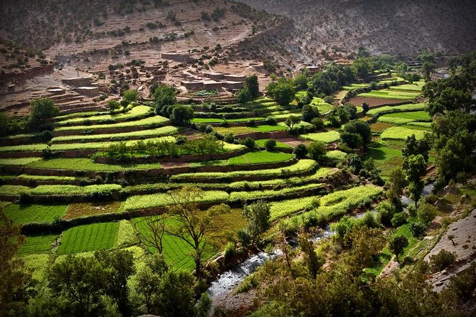 Atlas Mountains and 4 Valleys Private Guided Day Tour from Marrakech