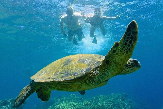 Mixed Snorkeling & Fishing Trip