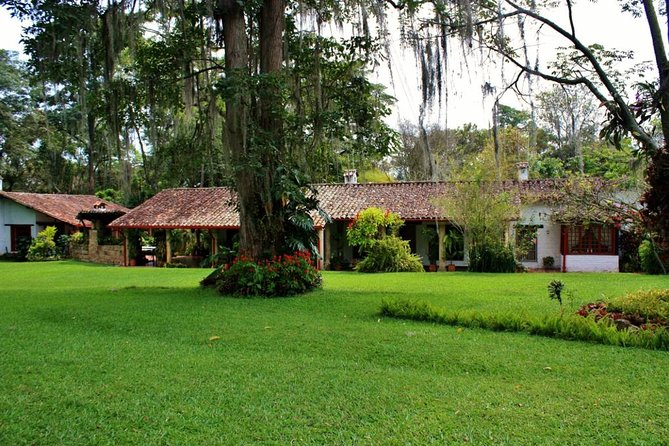Coffee Plantation 8 Hours All Included Private Tour Tickets Lunch