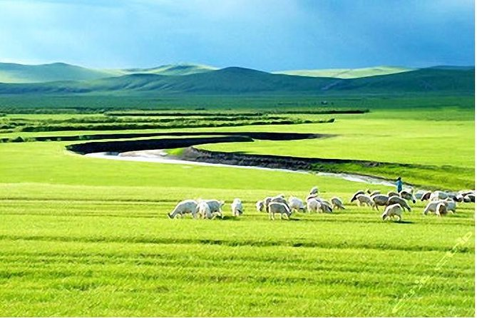 5-Day Private Trip to Inner Mongolia Grasslands and Deserts from Harbin