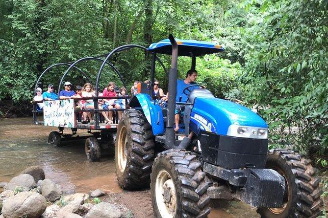 Rain Forest Wagon & Crocodiles Safari. Shore Excursion from Puntarenas