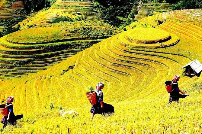 Muong Hoa Valley - Sapa Trekking Villages