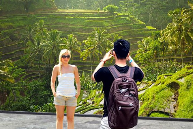 Ubud Tours: Culture, Palace, Temple, Rice field walks, Local show, Monkey Forest