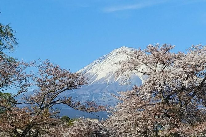 Mt. Fuji, visit where all the Japanese people belong (chartered taxi tour)