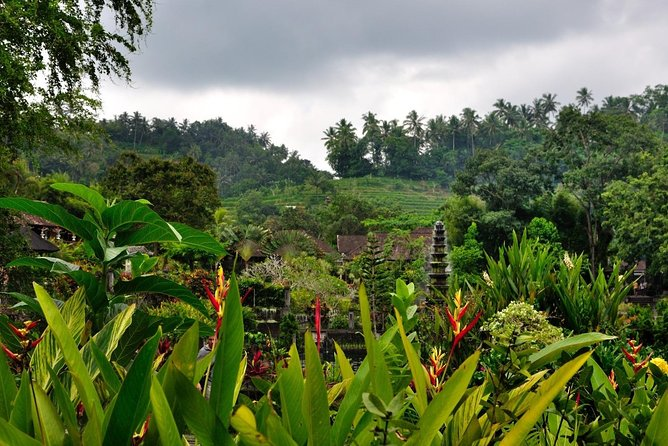 Rural Charm of Bali Tour photo 12