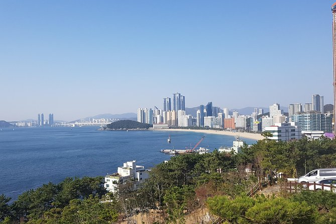 Private Day Trips : Highlights of Busan City Tour, from Busan
