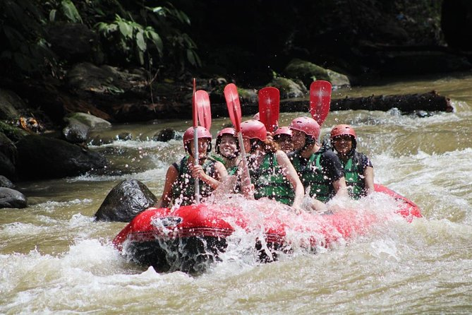 Full-Day Tour: White Water Rafting and Ubud Monkey Forest