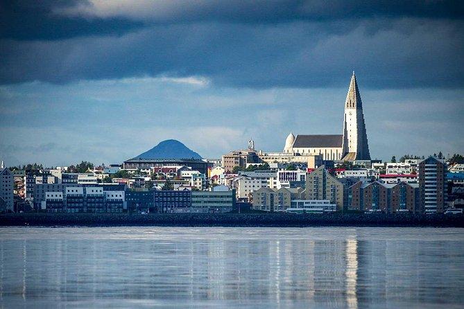 Reykjavik Shore Excursion: Reykjavik Sightseeing Tour by Minibus