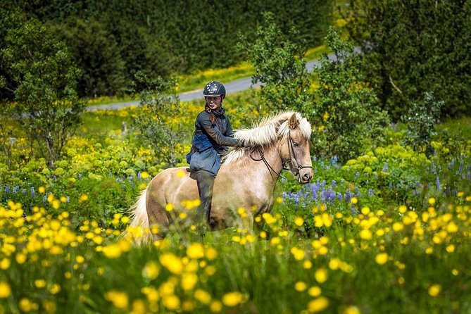 Viking Horse Riding and Golden Circle Tour from Reykjavik photo 9