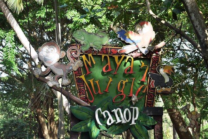 Mayan Jungle Canopy & Zip-line Tour, Monkey Business & West Bay Beach!