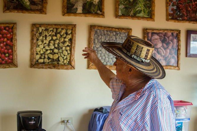 Full day coffee farm experience at Cafe de La Cima from Medellin