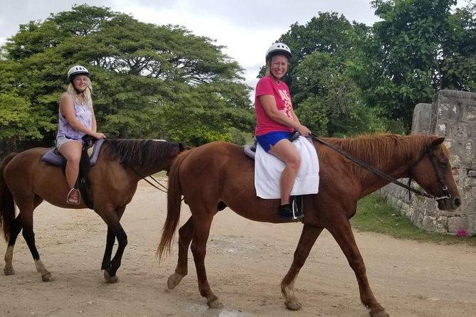 Falmouth Shore Excursion: Braco Stables Horseback Ride and Swim