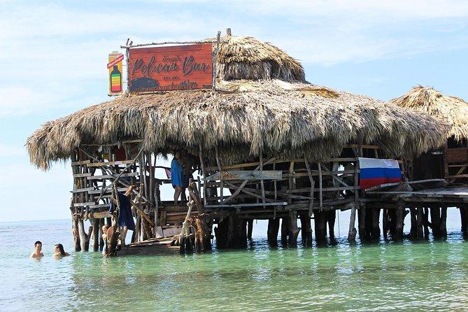 YS Falls, Black River Safari, and Floyd's Pelican Bar Day-Trip