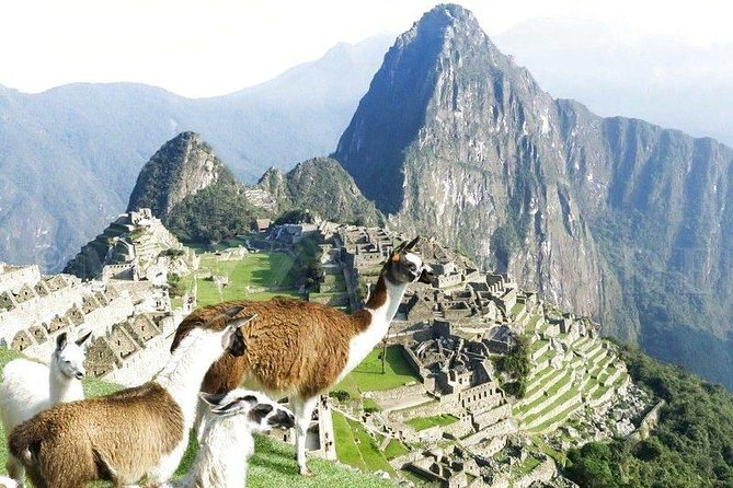 Discovering Mystic Machu Picchu full day tour from Cusco photo 4