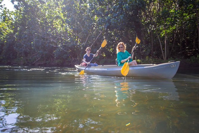 Kayaking and Adventure Tour